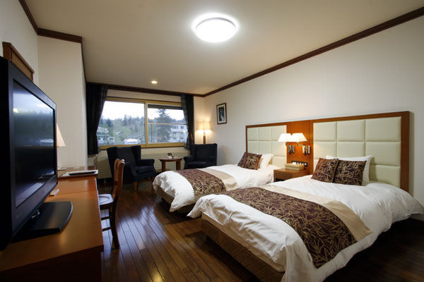 Large twin room with mountain view