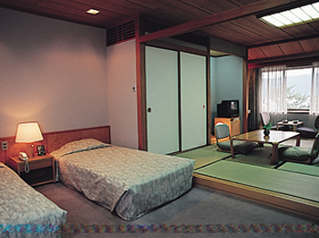 Japanese-western style room